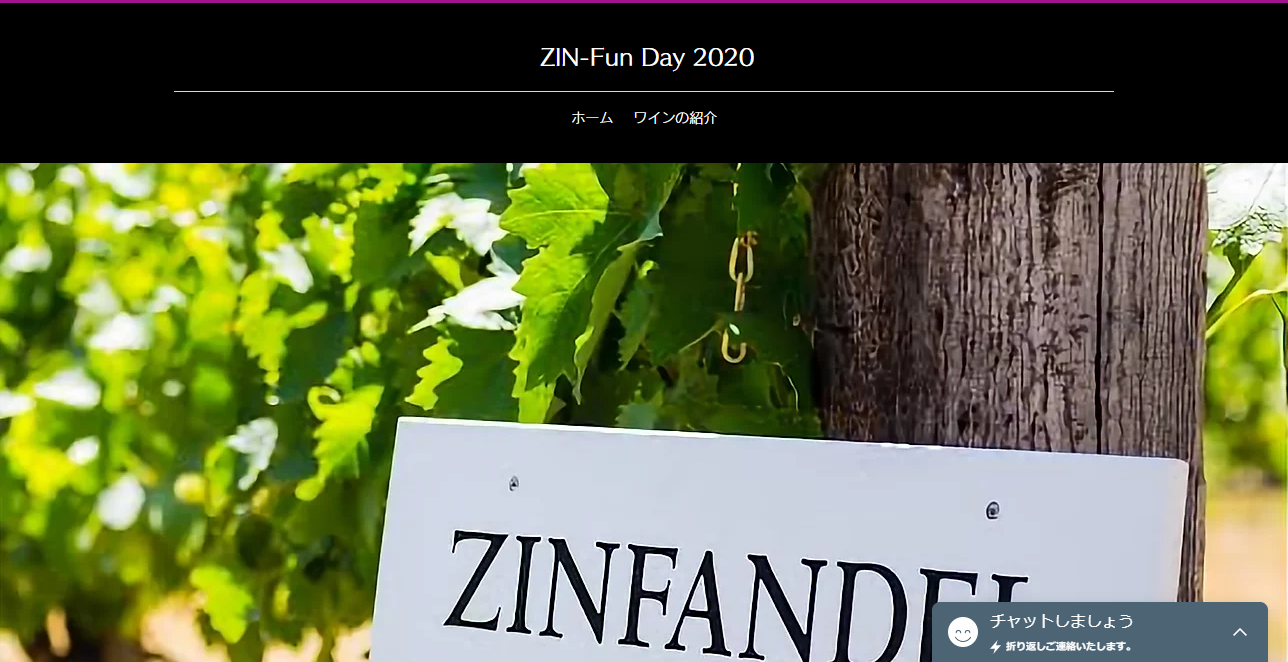 zin fun day